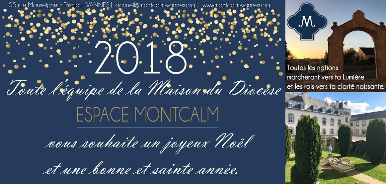 noel 2018 vannes Saint et joyeux Noël et Bonne Année 2018 !   Espace Montcalm noel 2018 vannes